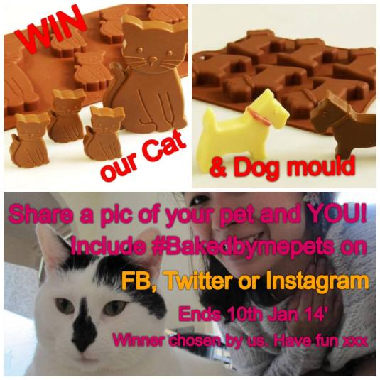 Baked By Me Pets Competition