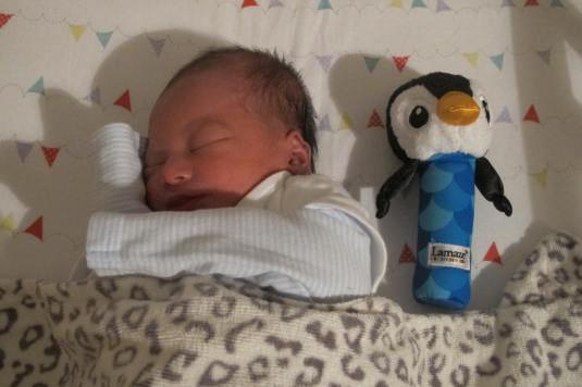 Frey and her penguin
