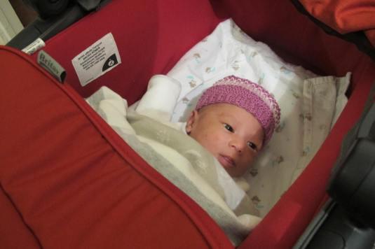 Freya in her Britax Carrycot