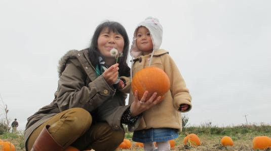 Pumpkin Picking at Cattows Farm